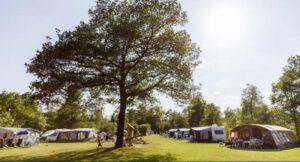 eenoudervakantie in Nederland bij Estivant