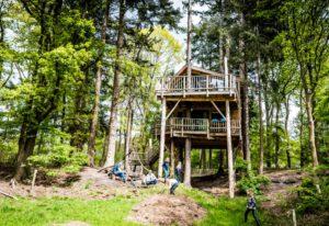 torentjeshoek treehouse boomhut